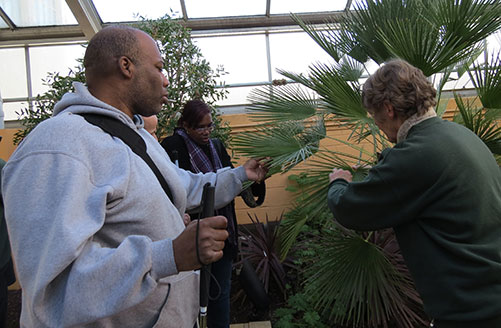 DORS Consumer Carl Brown and Glenda Weber examine the leaves on a large palm plant.