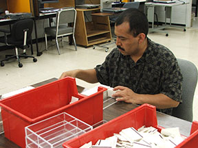 A man sorts index cards.